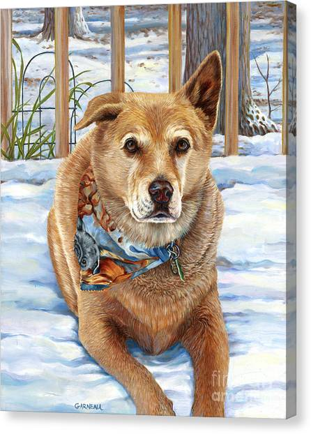 Dogs In Snow Canvas Print - Bear by Catherine Garneau
