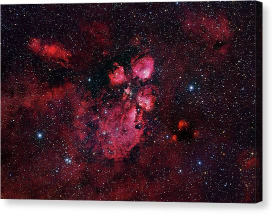 Bear Claws Canvas Print - Bear Claw Nebula (ngc 6334) by Robert Gendler/science Photo Library