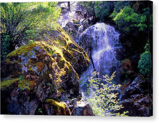 Bear Creak Tributary Bryceburg Junction Near Yosemite Canvas Print