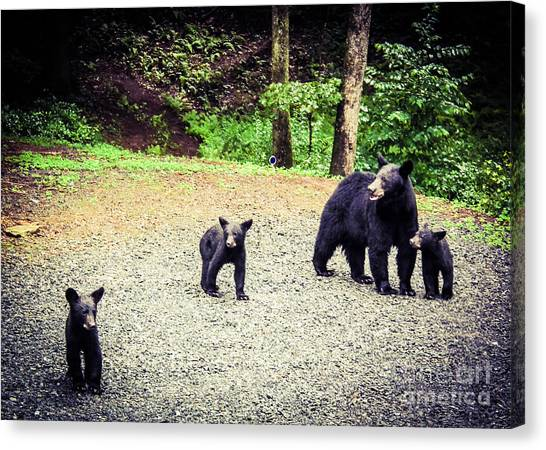 Bear Family Affair Canvas Print