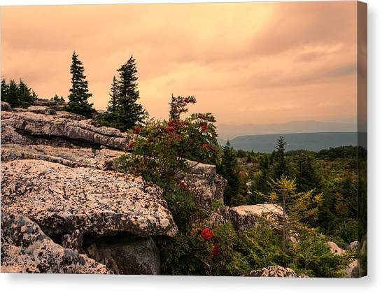Bear Rocks Sunset Canvas Print