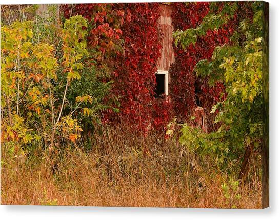Beautiful Barn Canvas Print