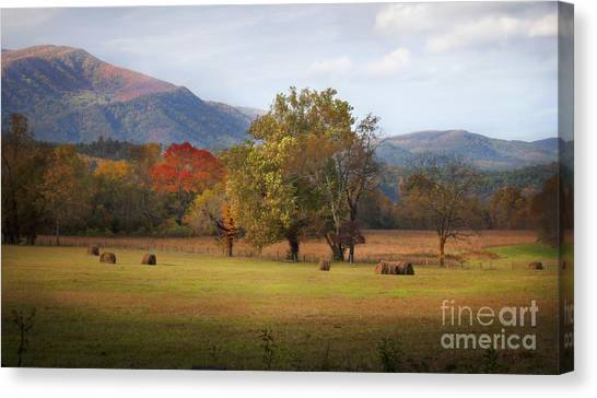 Beautiful Cades Cove Canvas Print