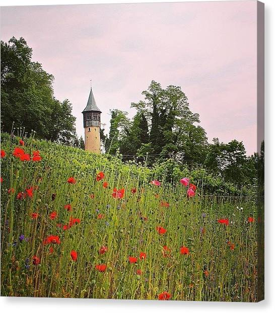 Big Red Canvas Print - Beautiful Castle! #sky #garden #castle by Photo Daily