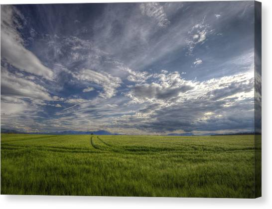 Beautiful Countryside Canvas Print