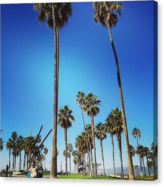 Venice Beach Canvas Print - Beautiful Day In #venice #beach by Jennifer Silva