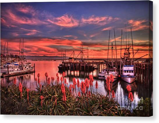 Beautiful Harbor Canvas Print