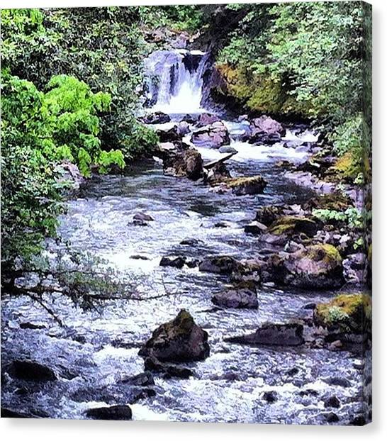Washington Nationals Canvas Print - Beautiful Little Falls At Canuon Creek by Mike Warner