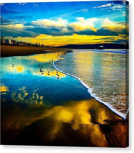 Sandpipers Canvas Print - Beautiful Manhattan Beach! #love by Julia Goldberg