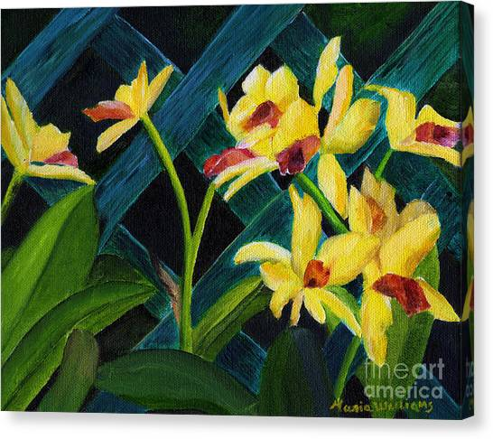 Beautiful Orchids  Canvas Print by Maria Williams