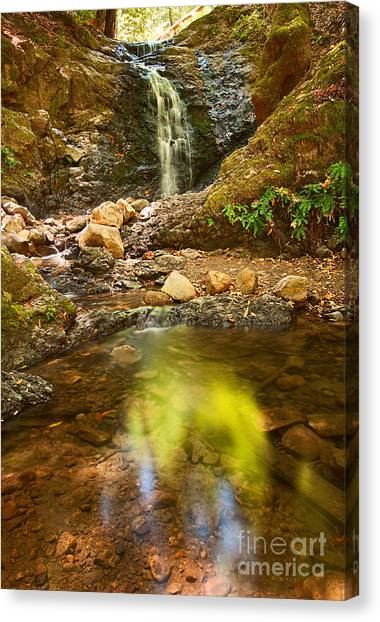University Of Virginia Canvas Print - Beautiful View Of Upper Falls Located In Uvas Canyon County Park Forest Reflection by Jamie Pham