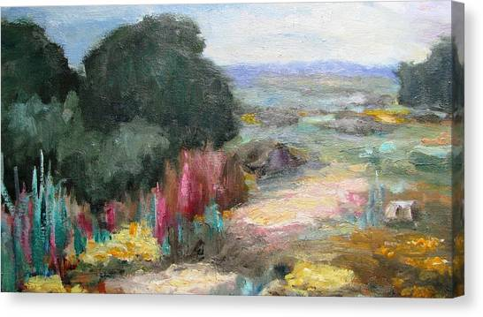 Beautiful Western Landscape Canvas Print