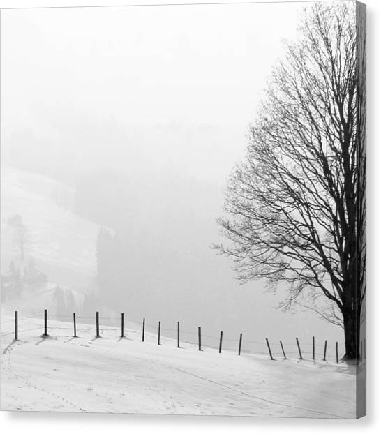 Landscapes Canvas Print - Beautiful Winter Landscape With Tree And Fence by Matthias Hauser
