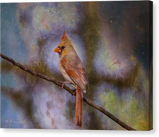 Beauty And The Beak Canvas Print