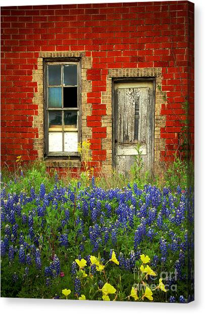 Red Door Canvas Print - Beauty And The Door - Texas Bluebonnets Wildflowers Landscape Door Flowers by Jon Holiday