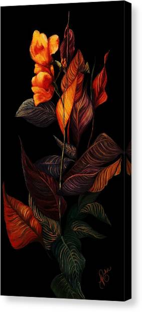 Beauty In The Dark Canvas Print