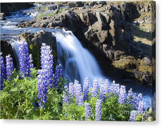 Beautyfull Cascade Canvas Print