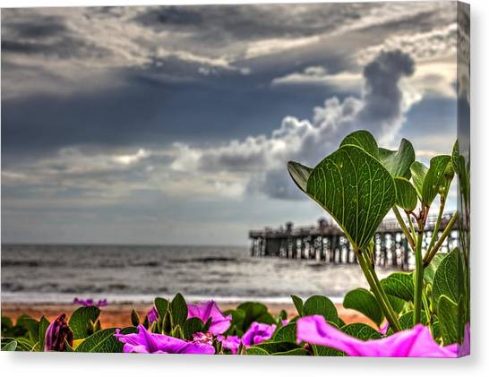 Beautyfulness Canvas Print