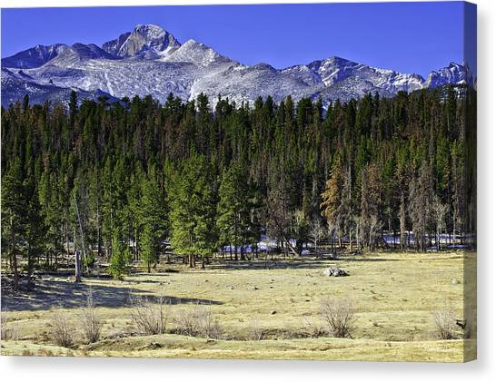 Beaver Meadows Canvas Print by Tom Wilbert