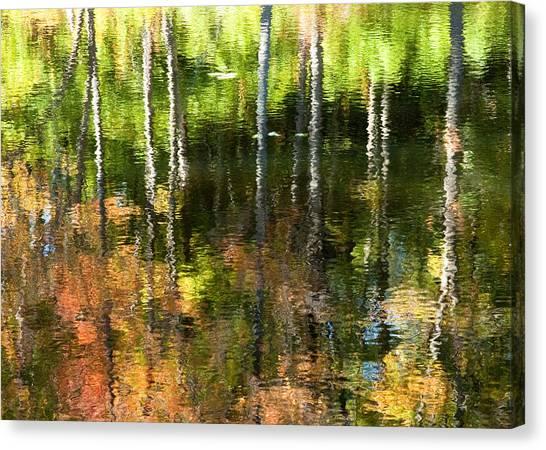 Beaver Pond Reflections 1 Gatineau Park Quebec Canvas Print