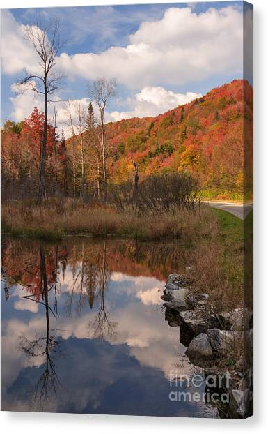 Beaver Pond Symmetry Canvas Print