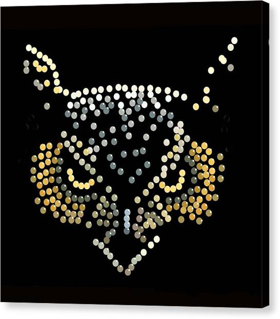 Bedazzled Owl Canvas Print