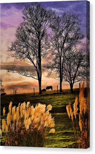 Bedtime Snackin Canvas Print