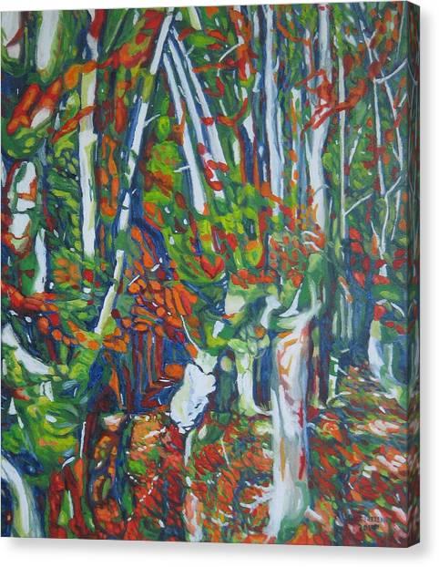 Beech Trees Canvas Print