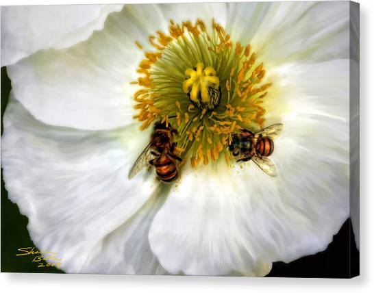 Bees On A Flower Canvas Print