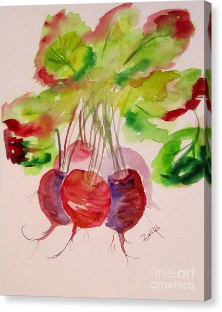 Beets And Green Tops Canvas Print by Delilah  Smith