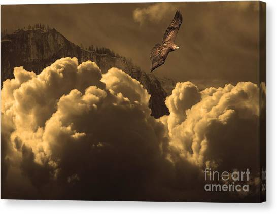 Avian Canvas Print - Before Memory . I Have Soared With The Hawk by Wingsdomain Art and Photography