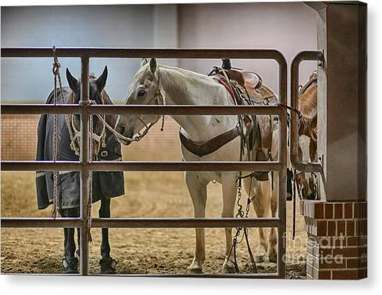 Rodeo Clown Canvas Print - Before The Rodeo by Douglas Barnard