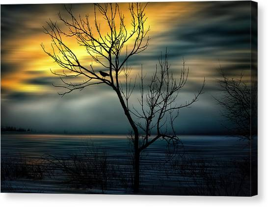 Beginnings Canvas Print by Gary Smith