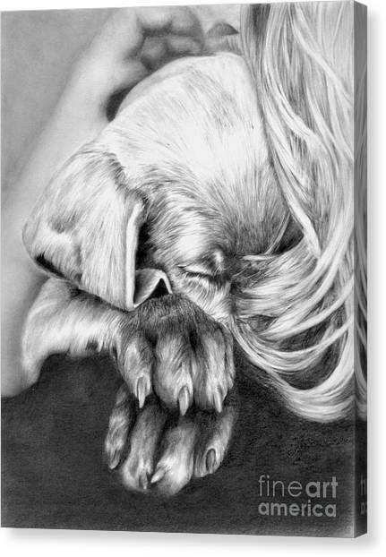 Weimaraners Canvas Print - Behind Closed Paws by Sheona Hamilton-Grant