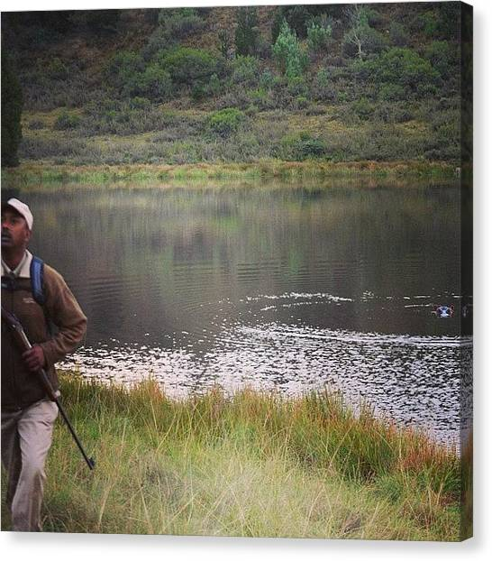 Hippos Canvas Print - Behind You 👀 #shamwari #hippo #ranger by Becky Howlett