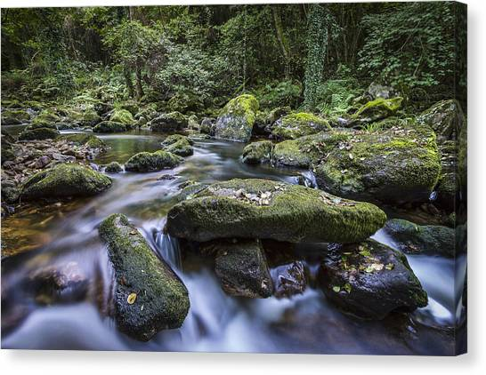 Belelle River Neda Galicia Spain Canvas Print