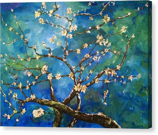 Belinda's Almond Blossoms Canvas Print