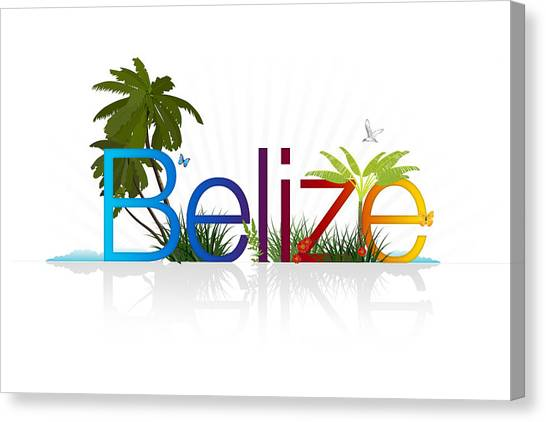Tropical Beach Canvas Print - Belize by Aged Pixel