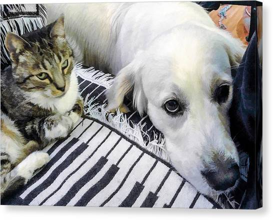 Bella And Peroni Canvas Print