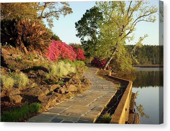 Pavers Canvas Print - Bellingrath Gardens - Alabama by Mountain Dreams