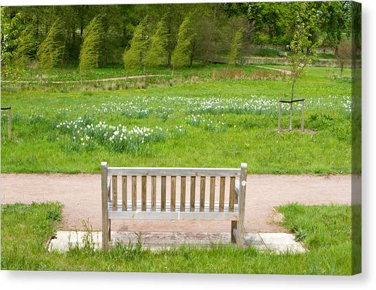 Canvas Print - bench in an English Countryside scene by Fizzy Image