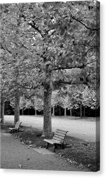 Benches In The Park Canvas Print