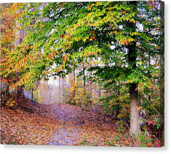 Beneath Branches Canvas Print