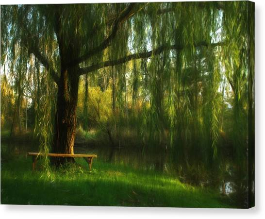 Weeping Willows Canvas Print - Beneath The Willow by Lori Deiter
