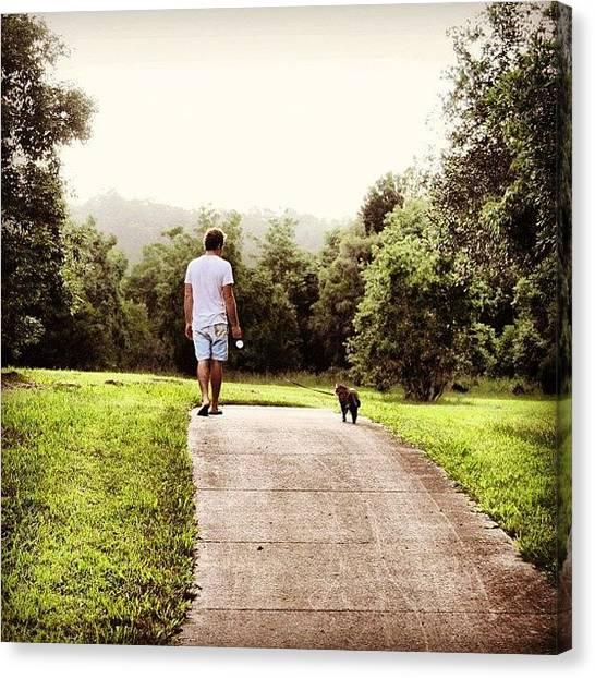 Bengals Canvas Print - @bengal_tamer Walking Leo #bengal by Lana Houlihan