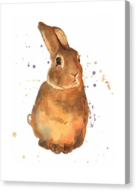 Rabbit Canvas Print - Benjamin Bunny by Alison Fennell