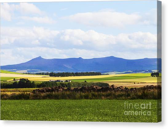 Bennachie Canvas Print
