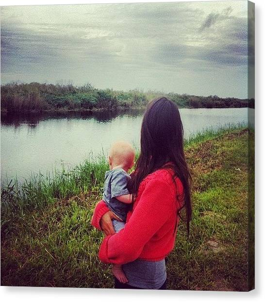 Everglades Canvas Print - Bennies First Alligator Sighting :) by Zoey Crystyna