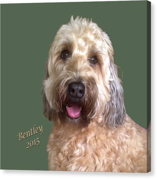 Bentley Canvas Print