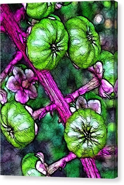 Benzo Canvas Print